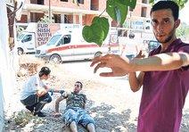 Bir bonzai dramı da Antalya'dan