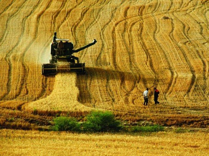 Tarım Bakanlığı 2 bin 500 personel alıyor