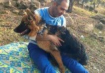 Köpeğini gezdirirken kazaya kurban gitti