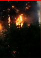 Londrada 24 katlı binada yangın
